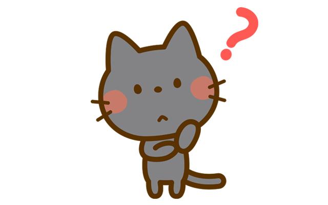 疑問のあるネコ
