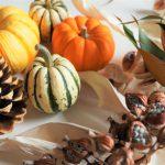 秋がテーマの 絵本 を使った保育実習はこの10選で決まり!